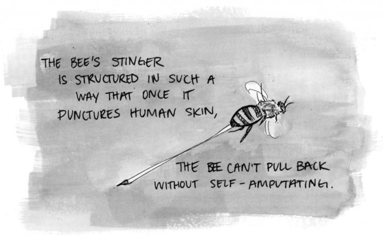 Bee-sting-1-1024x630.jpg